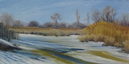 Lake Erie Metro Park Winter 2 - Oil