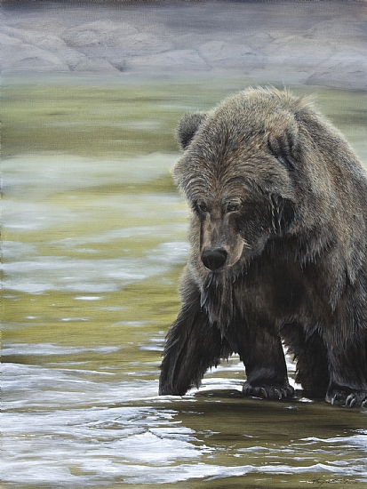 Buskin River Bear - Oil